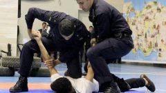 Polis Meslek Yüksek Okullarında Okutulan Dersler