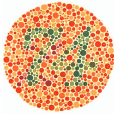 Ishiara Kitabı Ve Renk Körlüğü Testi