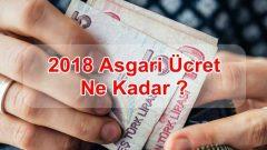 2018 Asgari Ücret Ne Kadar ?